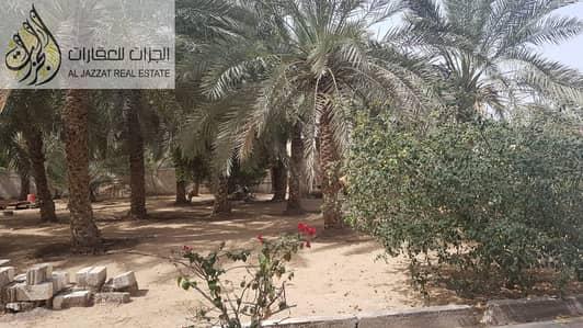 For Sale Farm  Al Falah -Sharjah