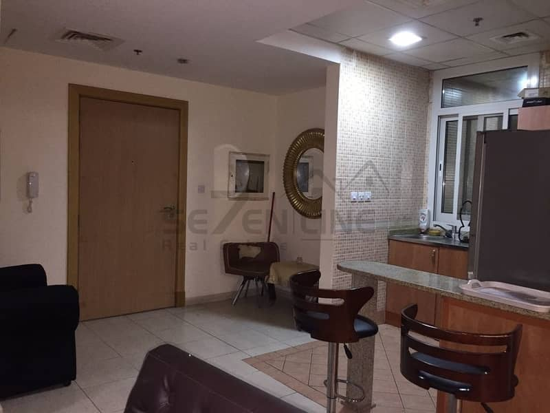 Good Investment Deal Fully Furnished 1BR
