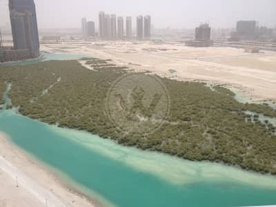 2 Bedroom Flat for Sale in Al Reem Island, Abu Dhabi - Rented | Hot deal Full mangrove and Sea View!
