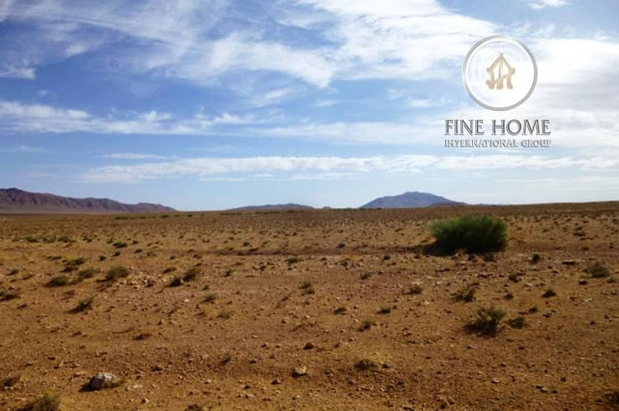 Residential Land in Zayed City