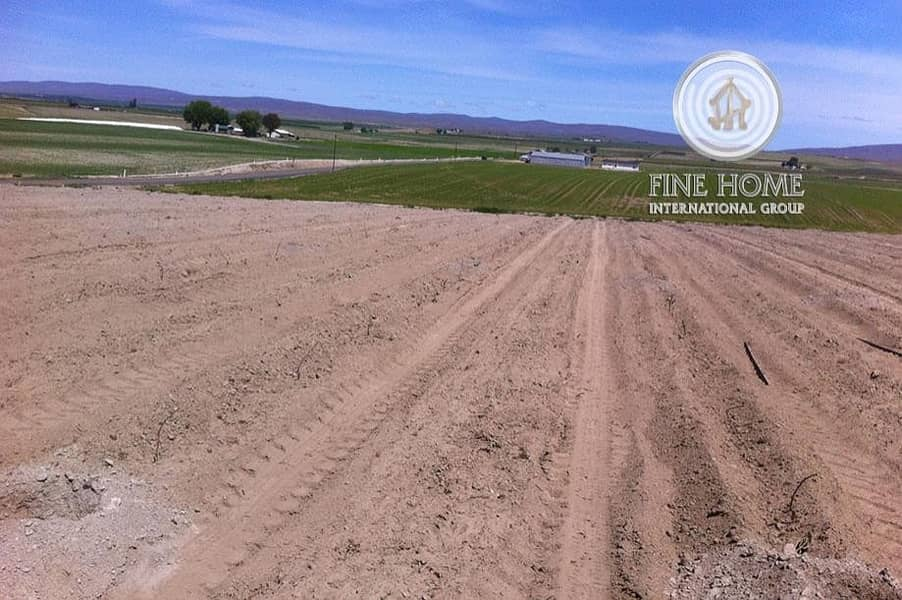 Prime Location Residential Land in zayed City