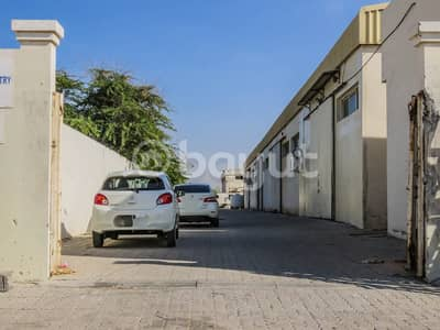 Warehouse for Rent in Emirates Modern Industrial Area, Umm Al Quwain - A warehouse for rent at competitive prices in the UAE industrial industrial zone (Umm Al Thaab)