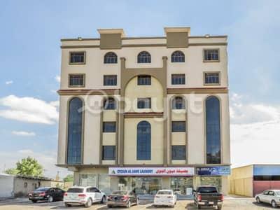 فلیٹ 2 غرفة نوم للايجار في العريبي، رأس الخيمة - غرفتين وصاله للايجار خلف السفير ماركت بالعريبي
