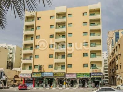 فلیٹ 2 غرفة نوم للايجار في القاسمية، الشارقة - شقة في القاسمية 2 غرف 24000 درهم - 3304239