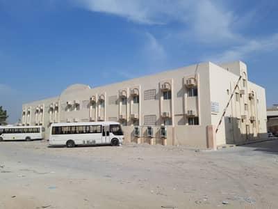 استوديو  للايجار في المنطقة الصناعية، الشارقة - شقة في المنطقة الصناعية 3 المنطقة الصناعية 17000 درهم - 3580708