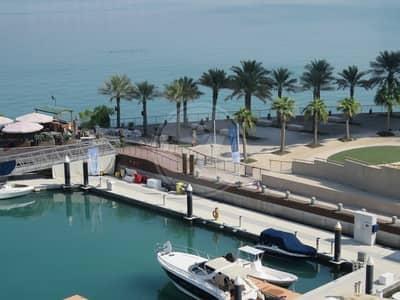 1 Bedroom Flat for Rent in Al Raha Beach, Abu Dhabi - Best price! Well kept 1 bed in Al Bandar