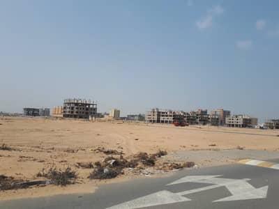 ارض سكنية  للبيع في المنامة ، عجمان - شقة سكنية في المنامة -4 ، عجمان للبيع أفضل اتصال لجميع الطرق السريعة