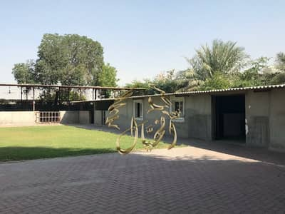 Mixed Use Land for Sale in Al Zubair, Sharjah - Farm for sale in Al Zubair