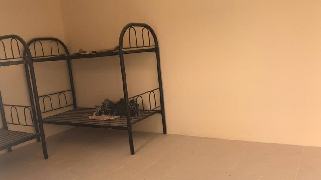 2 Nice Labor Accommodation Available For Rent In Saja