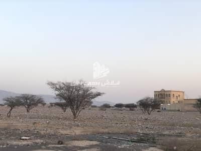 ارض سكنية  للبيع في سيح الحرف، رأس الخيمة - Plots for sale in Seih Al Harf  Rasalkhaimah