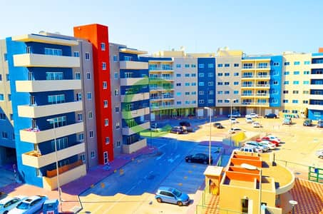 1 Bedroom Apartment for Rent in Al Reef, Abu Dhabi - Ornamental 1BR Apartment |Available Now!