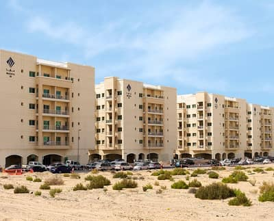 3 Bedroom Flat for Rent in Liwan, Dubai - Large 3 Bedroom Maids Store Laundry With Balcony 2 Car Parking- In Liwan- Queue Point, Dubai Land