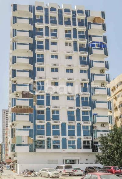 فلیٹ 2 غرفة نوم للايجار في عجمان وسط المدينة، عجمان - متوفر غرفتين و صالة مساحة كبيرة مطلة على البحر وبسعر مناسب في منطقة النخيل 1