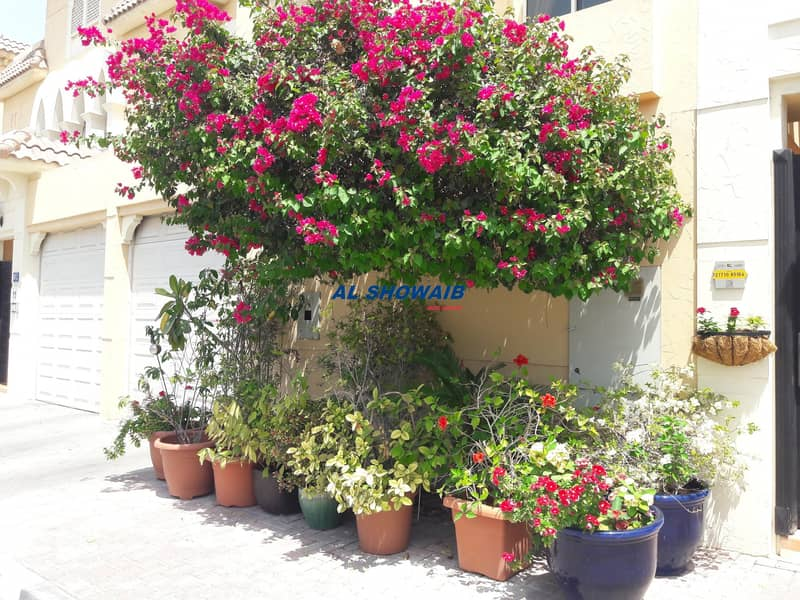 30 Huge 4 Br viIla with pool behind spinneys Al Safa 1