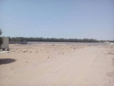 ارض استخدام متعدد  للبيع في الجرف، عجمان - Own a piece of commercial & residential land in Al Jurf Ajman
