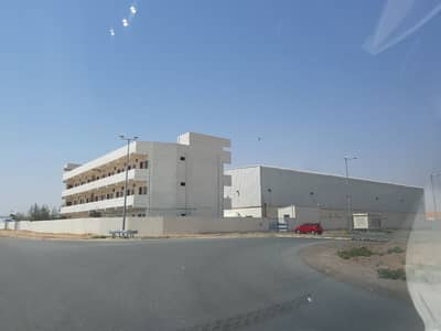 Factory for Sale in Al Ghail, Ras Al Khaimah - SALE Warehouse / Factory Shed and Labor Camp - RAK Free Zone