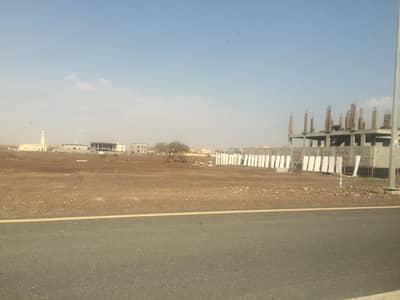 ارض سكنية  للبيع في المنامة ، عجمان - امتلك ارض سكنية اقساط 3 سنوات فقط مقدم 25 الف درهم  فى المنامة