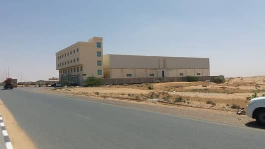 Industrial Land for Sale in Emirates Modern Industrial Area, Umm Al Quwain - For Sale Industrial Land in Umm Al Quwain in New Industrial (Umm Al Thaab)