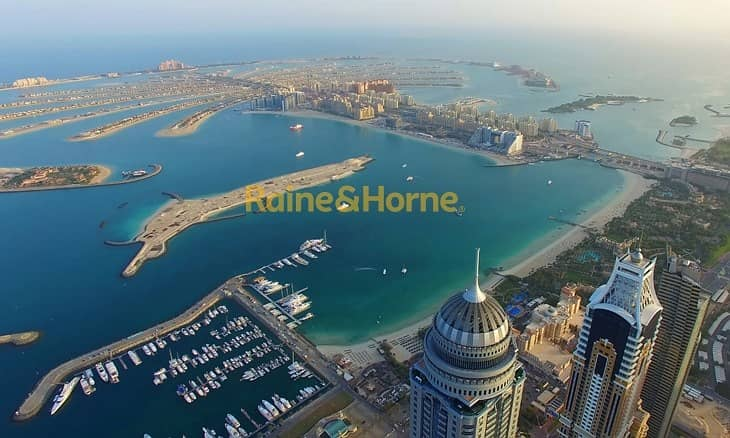 11 Fully Furnished Studio in The Palm Tower