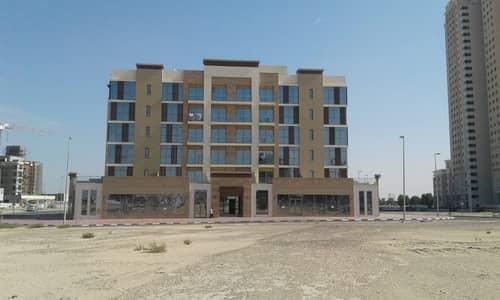 استوديو  للايجار في جوهر، أم القيوين - شقة في جوهر 30000 درهم - 4104487