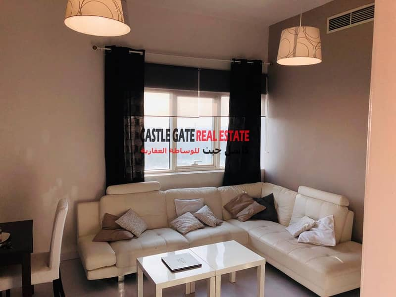 1 Amazing Fully Furnished 1 Bedroom For Rent