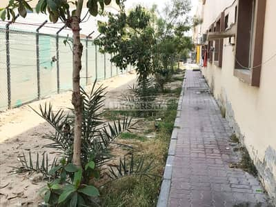 Labour Camp for Rent in China Mall, Ajman - 180 Rooms 60 Per Block 30 per Floor 2 kitchens In Labor Camp Ajman Back Side of China Mall Area