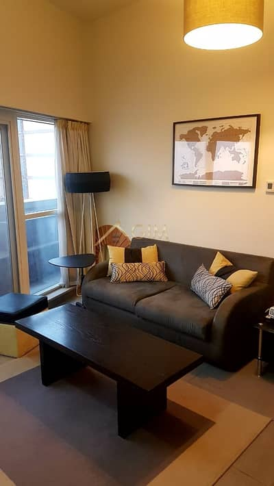 Fully Furnished One Bedroom Apt