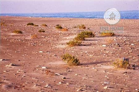 ارض تجارية  للبيع في مدينة محمد بن زايد، أبوظبي - Residential Land In Mohamed Bin Zayed City