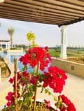 16 Luxury Home in Heart of Yas island .
