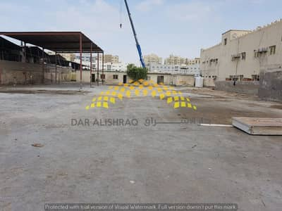 Factory for Rent in Industrial Area, Sharjah - Factory for rent with open yard, open shed and offices in industrial area 17