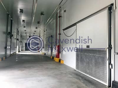 Warehouse for Rent in Dubai Industrial Park, Dubai - Brand New - Cold Store - For Lease - DIC