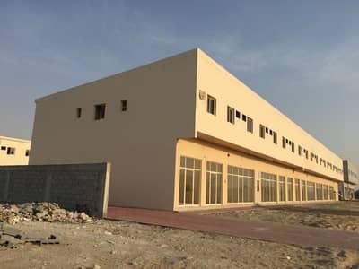 سكن عمال  للايجار في الجرف، عجمان - سكن عمال في الجرف 2 الجرف 900 درهم - 4174732