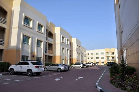 1 Bedroom Flat for Rent in Dubai Silicon Oasis, Dubai - Silicon Residence 1 - Stunning Apartments