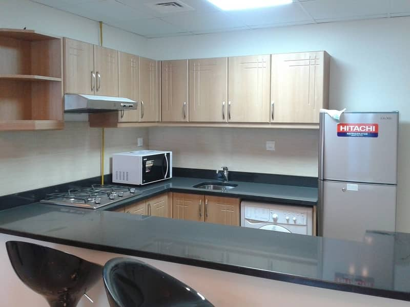 2 Fully furnished 1 BR| Vacant | Mint condition