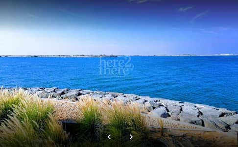 ارض سكنية  للبيع في جزيرة ناريل ، أبوظبي - Special Project for UAE Nationals. Plot for sale.