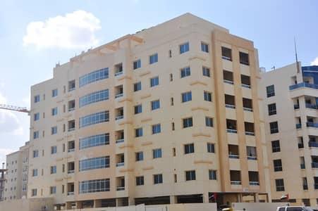فلیٹ 2 غرفة نوم للايجار في الورقاء، دبي - شقة في الورقاء 2 غرف 55000 درهم - 4199759