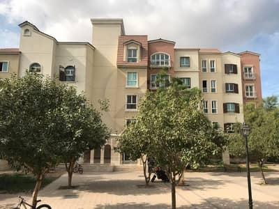 مبنى سكني  للبيع في ديسكفري جاردنز، دبي - Prime Location Type-U