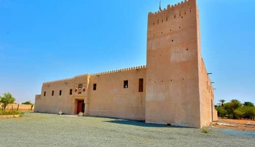 ارض سكنية  للبيع في المنامة ، عجمان - ارض سكنية في المنامة 125000 درهم - 4187204
