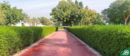 Acacia Avenues