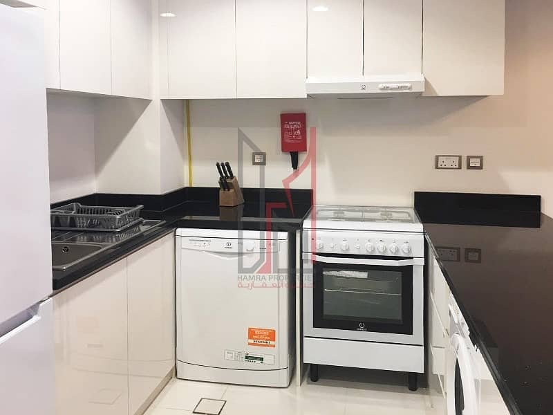 2 Spacious Fully Furnished 1 Bedroom