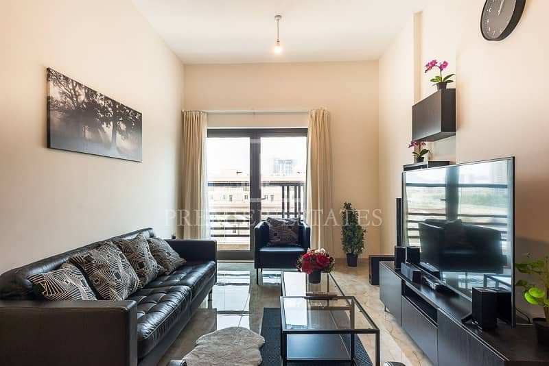 Fully Furnished 1 Bedroom Luxurious Apartment