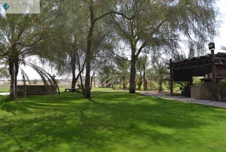 فيلا مجمع سكني 2 غرفة نوم للبيع في الخوانیج، دبي - Beautiful Farm I Fully Equipped I Wadi Al Mardhi