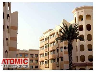 فلیٹ 1 غرفة نوم للايجار في المدينة العالمية، دبي - Well Maintained | 1BR For Rent In China Cluster