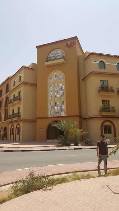فلیٹ 1 غرفة نوم للايجار في المدينة العالمية، دبي - شقة في طراز إسبانيا المدينة العالمية 1 غرف 32000 درهم - 4257229