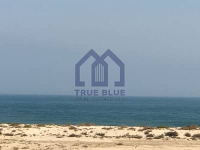 Full Sea View | Brand New | 2 BHK + Maids Room | Bermuda
