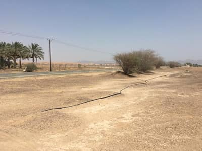 Plot for Sale in Al Manama, Ajman - Opportunity to build. Owns residential land in Manama area at the lowest prices and fee-free