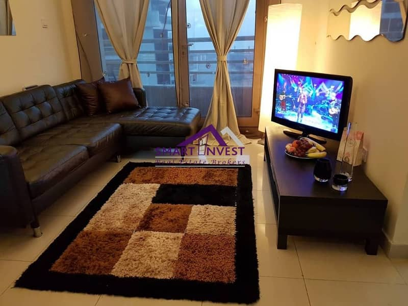 2  fully furnished 1 BR Apt. for rent in Manchester Tower