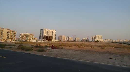 ارض تجارية  للبيع في ليوان، دبي - ارض تجارية في ليوان 17500000 درهم - 4287853