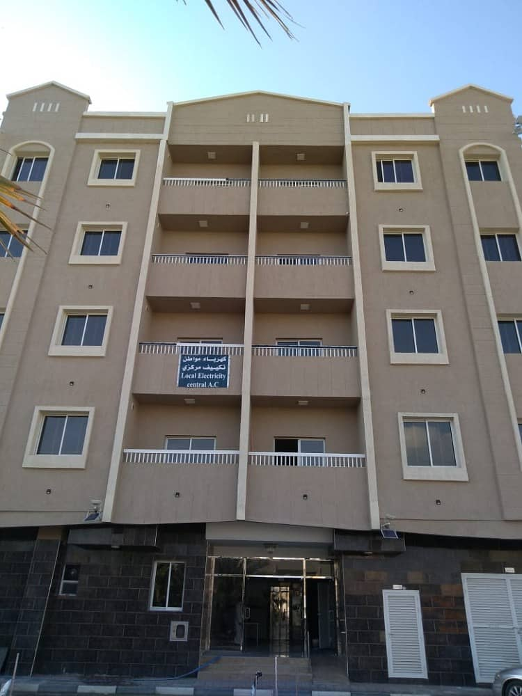 Apartments and studios for rent new building In Rashidiya 2