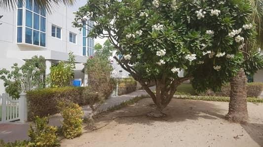 4 Bedroom Villa for Rent in Al Sufouh, Dubai - 1 MONTH FREE 4BR MAIDS COMPOUND VILLA IN AL SUFOUH AREA